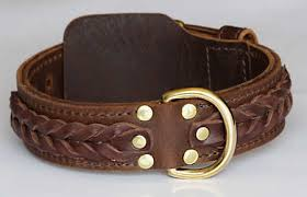 western designer custom leather dog
