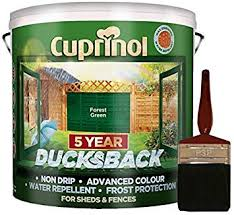 New 2017 Cuprinol Ducksback Shed Fence Paint 9 Litre Forest Green Non Drip Water Repellent And Frost Defence Protection For 5 Years Includes Psp 4 Fence Application Woodcare Brush Amazon Co Uk Diy