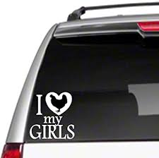 Amazon Com I Love My Girls Chickens Hen 6 Car Vinyl Sticker Decal Farm Ranch Poultrye39 Automotive