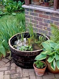 diy container water garden ideas