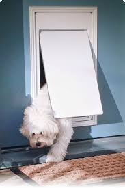 The Invisible Fence Brand Doorman Is Our Programmable Wireless Electronic Pet Door That Gives Your Dogs And Cat Dog Door Invisible Fence Invisible Fence Dogs