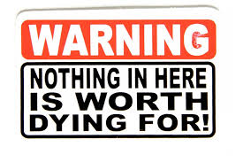 Nothing In This Truck Is Worth Dying For Vinyl Decal Many Colors Free Shipping Rainbowlands Lk