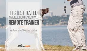 Wireless Dog Fence With Remote Trainer Reviews Fast Dogs
