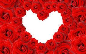 خلفيات قلوب وورود
