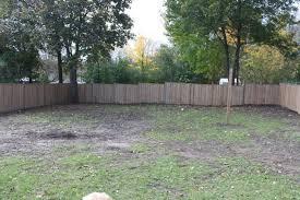Landscaping Food Dirt
