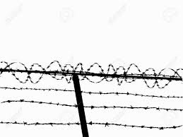 Barbed Wire Fence Drawing At Getdrawings Free Download