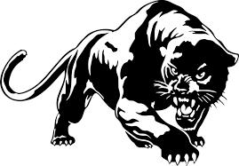 Black Panther Puma Jaguar Cat Wild Animal Vinyl Wall Art Sticker Home Car Decal For Sale Online Ebay
