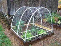 Raised Bed Garden Fencing Ideas Video And Photos Madlonsbigbear Com