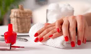 animus hair nails and beauty up to 40