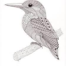 Tangled Kingfisher Kleurplaten
