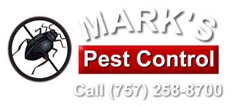View National Termite And Pest Control  Pics