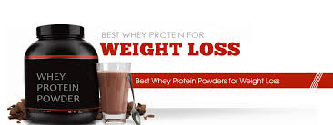 10 best whey protein for weight loss