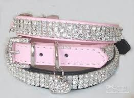 pet collars with bling norwich