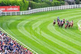 Tips from the big bookies for Cox Plate day