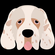just for your clumber spaniel