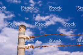 Metal Fence Post And Barbed Wire Stock Photo Download Image Now Istock