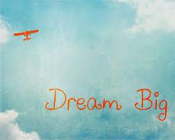 vintage airplane print dream big inspirational quote boy nursery