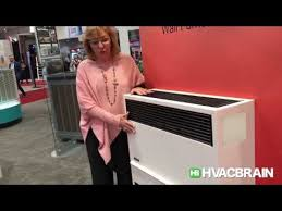 williams direct vent gravity wall