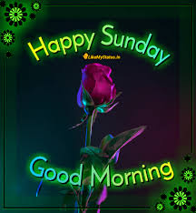 happy sunday wishes for whatsapp