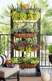 25 best indoor garden ideas for your