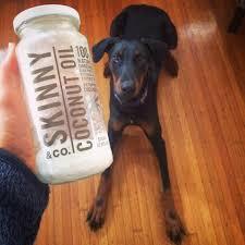 homemade dog treats by skinny co