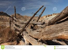 191 Rustic Old Wooden Fence Posts Photos Free Royalty Free Stock Photos From Dreamstime