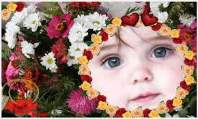 flowers photo frames new apk android