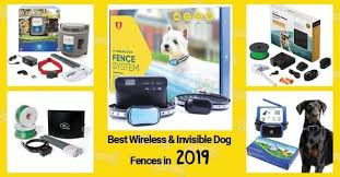 Best Wireless Invisible Dog Fences 2020 The Ultimate Guide