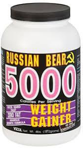 russian bear 5000 36 95