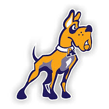 University Albany Great Danes Mascot Vinyl Die Cut Decal