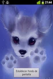 puppy live wallpaper yyv8943 320x480