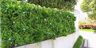 Artificial Hedges Rolls Mats Roll Boxwood Hedges Roll