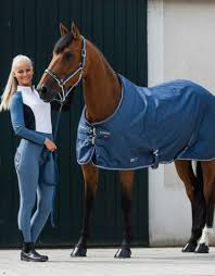 B VERTIGO ADA LONG SLEEVE SHOW SHIRT - Equine Essentials Tack & Laundry  Services
