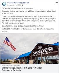 gastonia s new gander mounn is