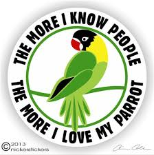 Masked Parrot Decals Stickers A Nickerstickers