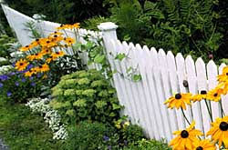 How To Build A Fence Tips Tricks And Local Pros