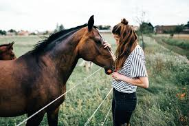 Relation homme cheval - Equitation - Doctissimo