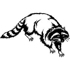 15 2 9 8cm Raccoon Tree Animal Tail Hat Coon Dog Hunting Vinyl Decal Car Sticker Accessories Black Sliver C6 1550 Sticker Vw Stickers For Toy Carsstickers For Bmx Bikes Aliexpress