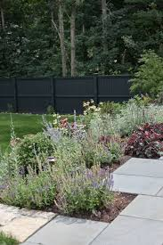 Make Your Garden Fences Disappear With This Surprising Color