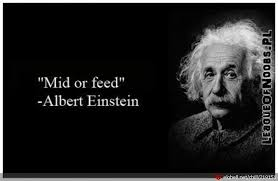 is this quote from einstein the more i know the science the more