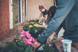 weeding tools to rid your garden