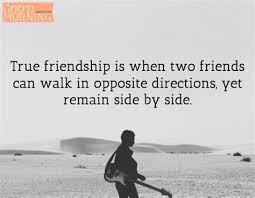 friendship despite differences quotes