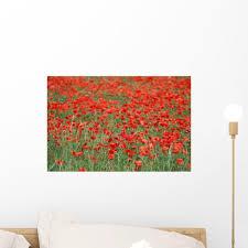 Field Poppies Wall Decal Wallmonkeys Com