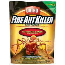 Get Ant Treatment For Home Images