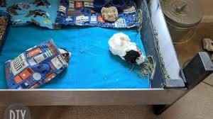 diy wood guinea pig cage diy danielle