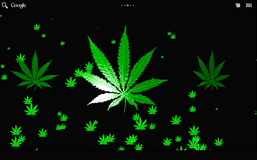 weed wallpapers weed pics for