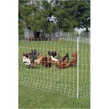 Gallagher 48 X164 12wire Electric Fence Poultry Netting Home Hardware