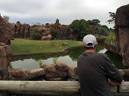 Aquatic Biologist, Dustin Kennedy, takes a moment to enjoy the spectacular  view of the lion enclosure after servicing … | In this moment, Norfolk,  Natural landmarks