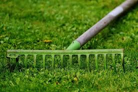 basic gardening tools list with picture