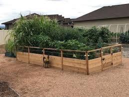 Olt Raised Cedar Garden Bed 8 X8 8 X12 Or 8 X16 With Deer Fence Op World Of Greenhouses